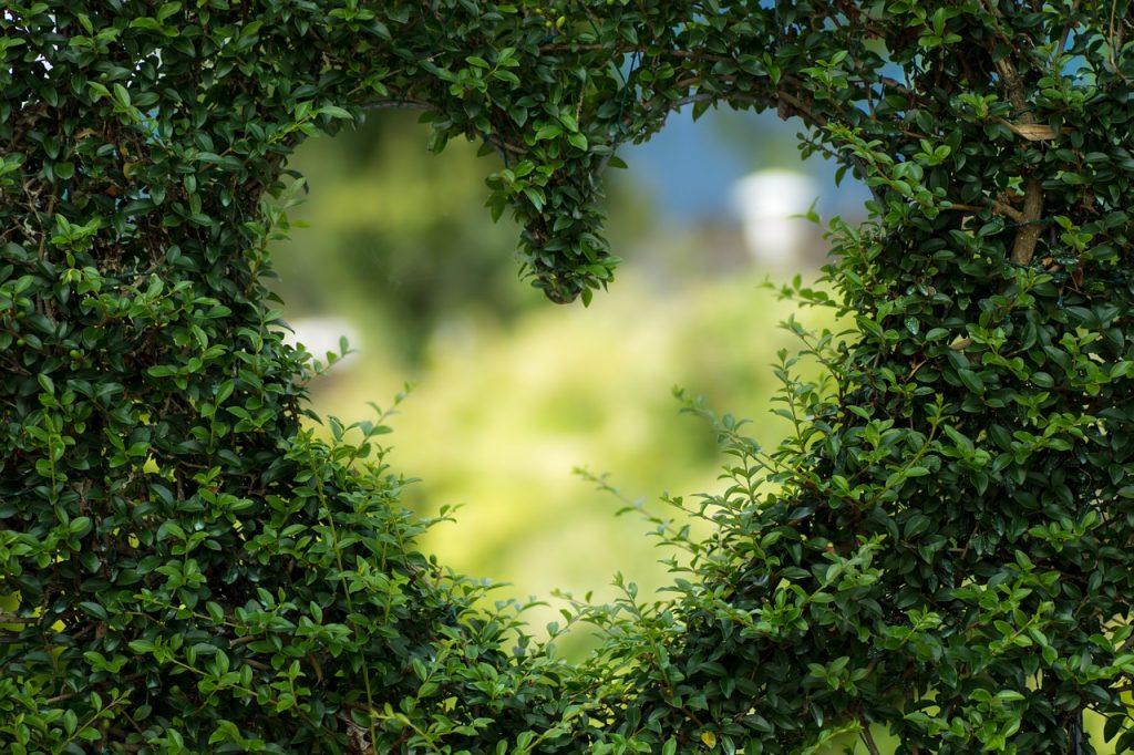 voyance-amoureuse-gratuite